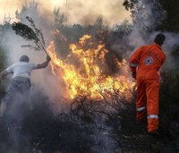74 killed in deadliest Greek wildfire season in decades