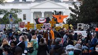 Scattered protests in US cities, but no wide unrest seen