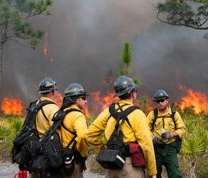 (Photo/U.S. Department of the Interior)