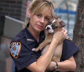 Investigator Annemarie Lucas of the Humane Law Enforcement division of the American Society for the Prevention of Cruelty to Animals is seen with a rescued dog in New York.
