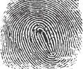Biometrics gaining ground in law enforcement