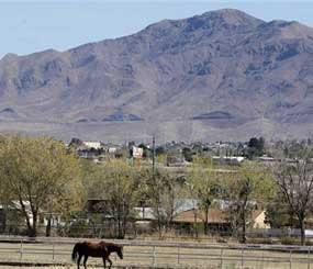 In this March 22, 2012 photo, a horse trots around a field in the early morning in Sunland Park, N.M. Scandal in this small border town is nothing new. But what is new is the harsh response: State and federal authorities are focusing on border town corruption as part of the larger effort to battle the influence of Mexican drug cartels. (AP Image)