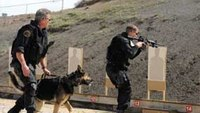 Down, draw, shoot: Conditioning the K-9 team for a gunfight