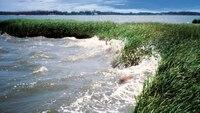 Water Funding for Estuaries: The Glue That Guards Against Storm Devastation