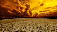 4 Key Steps Communities Take for Drought Survival