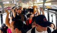 Case Studies: The Impact of Free Public Transit