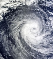 The 7 Must-Do Steps for Hurricane Disaster Preparation