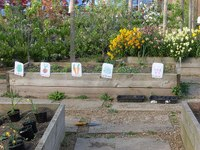 School Garden Grants Offered by Many