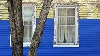 Detroit Addresses Lead Paint With Website & Rental Inspections