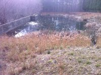 DeKalb County Launches $2 Million Effort to Clean up Stormwater Ponds