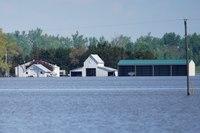 Midwest Farmers Face Growing Dilemma in Wet, Warming World