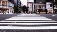 Actor's Death on Venice Street Sparks Mourning, Concern Over Pedestrian Safety Stateside