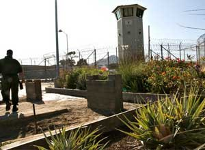 Inmates at San Quentin have created a tiny retreat for themselves within the prison yard walks: a 1200-square organic garden. (Image California Report)