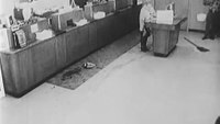 Throwback: 1968 'Bank Robberies'