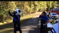 Paramedic panda shows his smooth moves