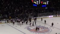 NYPD, FDNY brawl during hockey charity game
