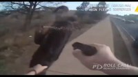 Reality Training: Suspect attacks cop during arrest