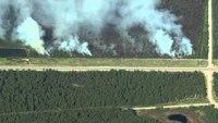 Reinforcements scheduled for Alaska wildfires