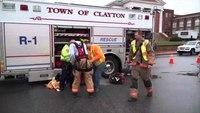 Firefighters rescue kitten from storm drain