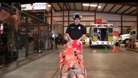 Can your EMS director pass the physical ability test?