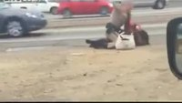 CHP officer scuffles with woman on freeway