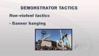 Crowd Control: Demonstrator Tactics