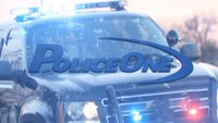 Dealing with Pregnancy in Law Enforcement