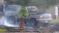 Lightning strike causes palm tree fire