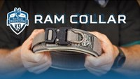 RAM Collar - Leather and Nylon Agitation Dog Collar