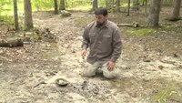 Survival skills: How to boil water with rocks