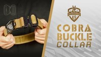 Cobra Buckle Dog Collar - 4000lb Weight Tested