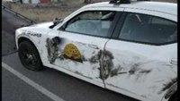 Utah trooper sideswiped by semi-truck