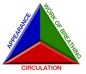 The Pediatric Assessment Triangle is a rapid check of child's appearance, circulation and work of breathing