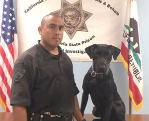 Correctional Officer Ernest Trujillo, with Calipatria State Prison, recently saved the life of his K-9 partner, Tucker. (Photo CDCR)