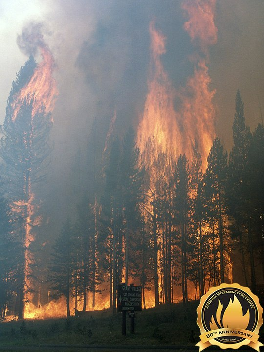 The Yellowstone National Park fires of 1988 burned nearly 800,000 and spurred major changes and improvements to fire safety and fire management principles. (Photo/NIFC)