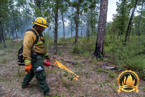 The National Association of State Foresters joined the NIFC in 2000. The association protects the nation's state and private forests, accounting for about two-thirds of all U.S. forests. (Photo/NIFC)
