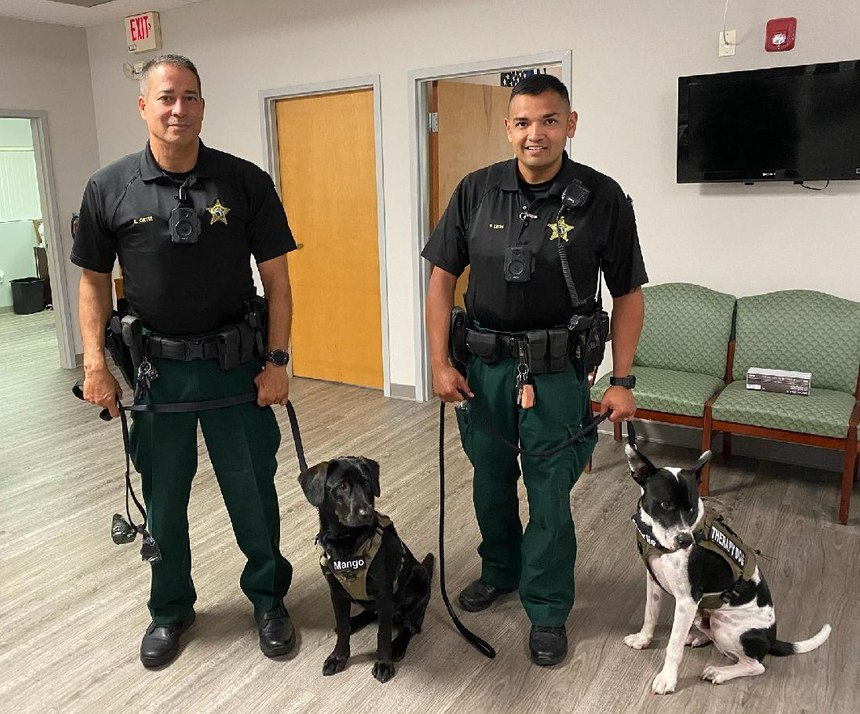 Pasco County is one of the first law enforcement agencies in the nation to use therapy dogs to work specifically with the mental health community.(Photo/Pasco County Sheriff's Office)