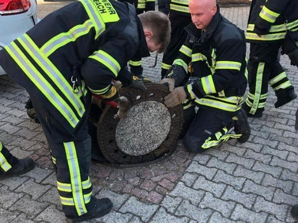 Some questioned why firefighters and the rescue group put so much effort into the rescuing of an animal that is usually exterminated. (Freiwillige Feuerwehr Auerbach Facebook)