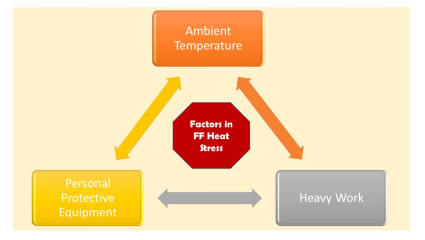 Figure 2. The research conducted by Smith and her associates identified these three common aspects of a firefighter's work that contribute to firefighter heat stress. (Image/Robert Avsec)