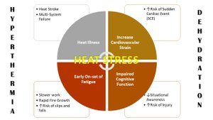 Figure 2. Hyperthermia and Dehydration, also known as the terrible twins of firefighter heat stress can cause a myriad of physiological and behavioral problems for firefighters. Original graphic by Robert Avsec