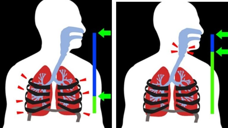 Breathing is shown at left, talking is shown at right.
