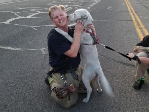 We love happy endings! (Photo/Pueblo Fire Department Facebook)