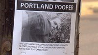 Ore. police searching for public pooper