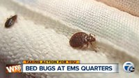 Bed bugs force closures for Detroit EMS quarters
