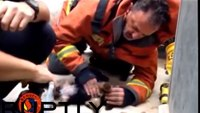 Firefighter attempts CPR on puppy