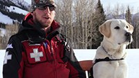 How to train an avalanche search and rescue dog