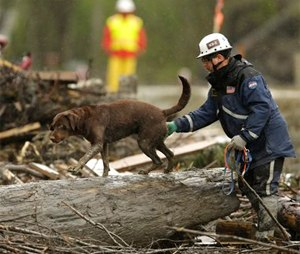 Officials spent nearly five weeks looking for bodies at the site of the March 22 Oso mudslide. On Monday, officials announced they would no longer be actively looking for bodies. The task now switches to clearing debris from the area. A total of 41 bodies have been recovered. Two people remain missing. (AP Photo/Ted S. Warren, File)
