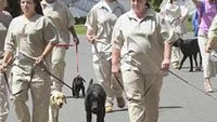 Dog days at Denver Women's Correctional Facility